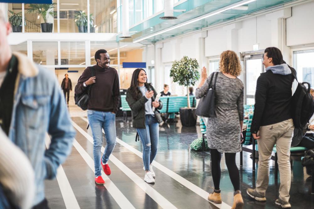 Rankings universitarios: ¿cómo funcionan y por qué son importantes?