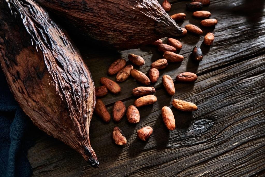 La calidad del cacao ya tiene su certificación: una tesis de la UPCT evalúa los mejores granos de Ecuador